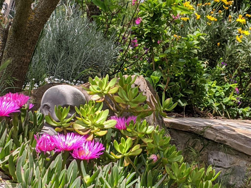 Image du jardin zen